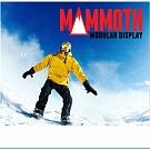 10' Mammoth Lightbox Display