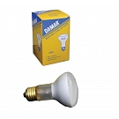 50 Watt Incandescent Bulb